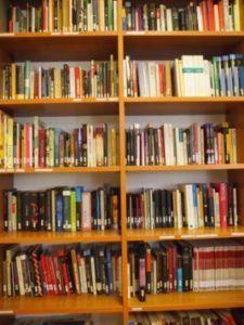 Nuestra biblioteca de español. Imagen de CEH-Sarajevo